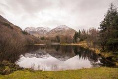 Schottland-Hochländer nahe Glencoe, schöne Winterlandschaft für Reise stockbilder