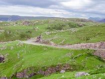 Schottland-Natur im Sommer Stockfoto