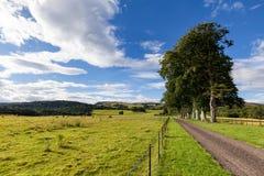 Schottland-Straße Stockbilder