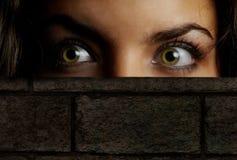 schować się w chowanego Zdjęcie Stock
