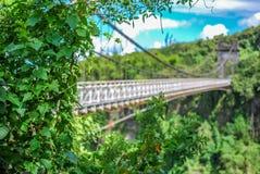 Schrägseilbrücke auf La Reunion Island lizenzfreie stockfotos