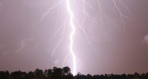 Schraube der Zeus Stockbilder