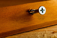 Schraube im Holz Lizenzfreie Stockfotografie