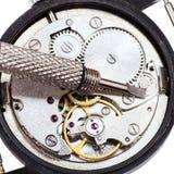 Schraubenzieher auf der offenen reparierten Uhr lokalisiert Stockfotografie