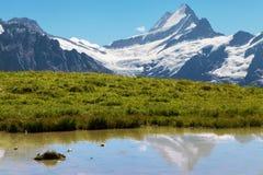 Schreckhorn, alpi svizzere Fotografia Stock