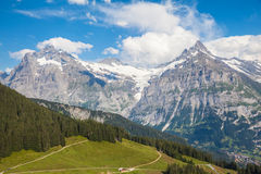 Schreckhorn in alpi svizzere Fotografia Stock Libera da Diritti
