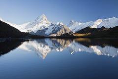 Schreckhorn del lago Fotografia Stock Libera da Diritti