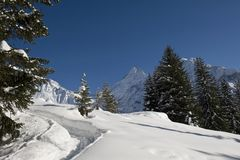 Schreckhorn en invierno Imagen de archivo libre de regalías