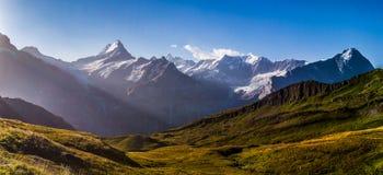 Schreckhorn Mountain Panorama Royalty Free Stock Photos