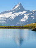 Schreckhorn reflected Royalty Free Stock Photography