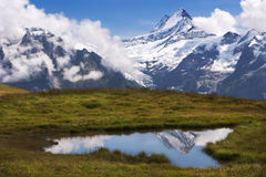 Schreckhorn reflects in Alpine pond Stock Photography