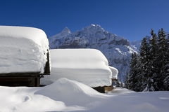 Schreckhorn in winter stock photography