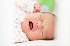 Schreeuwend pasgeboren babymeisje royalty-vrije stock fotografie