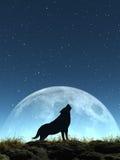 Schreeuwende Wolf Royalty-vrije Stock Afbeelding