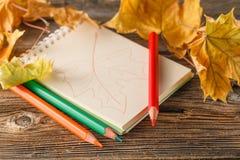 Schreiben-Bücher, mehrfarbige Bleistifte in einer Schale und Herbstlaub Stockfotos