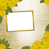 Schreiben des abstrakten Hintergrundes mit Löwenzahn Lizenzfreie Stockbilder
