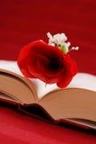 Schreiben eines Romance Romans Lizenzfreies Stockbild