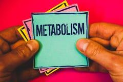 Schreibensanmerkung, die Metabolismus zeigt Geschäftsfoto, das chemische Prozesse im Körper zur Schau stellt, um Energielebensmit stockbilder