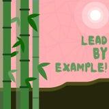Schreibensanmerkungs-Vertretung Führung durch Beispiel Geschäftsfoto Präsentationsführungs-Management-Mentor-Organisation vektor abbildung