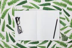 Schreibtisch mit Farnblättern, leeren offenes Notizbuch, schwarze Brillen und Bleistift von oben Flaches Lageanreden Lizenzfreie Stockbilder