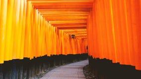 Schrein oder Fushimi Inari Taisha, ein shintoistischer Schrein Fushimi Inari in Kyoto, Japan Ein japanisches Monument, berühmt fü stock video