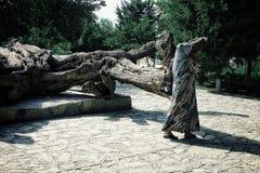 Schrein von Nashqabandi mit einer Pilgerdame, die um den legendären Baum einkreist lizenzfreies stockbild