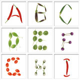 Schrifttypen vom Gemüse stockbilder