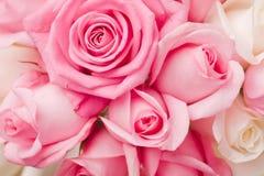 Schrijf roze rozenboeket in Stock Afbeeldingen