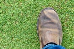 Schritt auf einem lawn-1 Lizenzfreies Stockbild