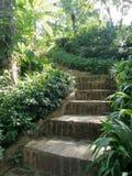 Schritt an zum geheimen grünen Garten Lizenzfreie Stockfotos