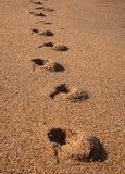Schritte Stockbild