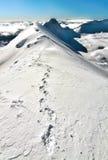 Schritte auf dem Ridge Stockfotos