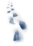 Schritte auf dem Schnee Lizenzfreie Stockfotos