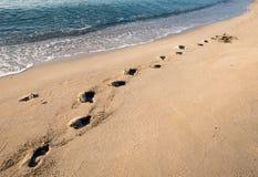 Schritte auf einem sandigen Strand lizenzfreies stockfoto
