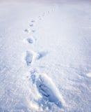 Schritte auf Schnee Stockbilder