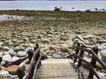 Schritte, die zu felsiges Ufer von Ozean in Mittel-Maine führen lizenzfreie stockfotografie