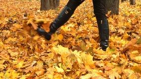 Schritte für Herbstlaub stock video footage