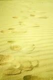 Schritte im goldenen Sand auf dem Strand Lizenzfreie Stockbilder