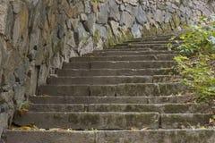 Schritte im Park Lizenzfreies Stockfoto