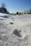 Schritte im Schnee Stockfoto