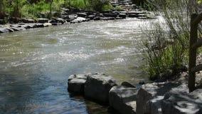 Schritte zu einem Fluss stock video