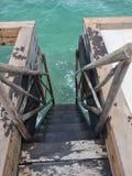 Schritte zum korallenroten Leben Lizenzfreie Stockbilder