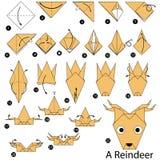Schrittweise Anweisungen, wie man Origami ein Ren macht Stockfotografie