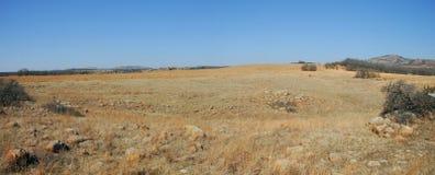 Schrob prairie royalty-vrije stock foto's
