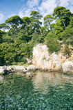 Schroffe Felsen-Küste Lokrum-Insel-Kroatiens Lizenzfreies Stockbild