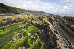 Schroffe Küstenlinie in Irland Lizenzfreie Stockfotografie