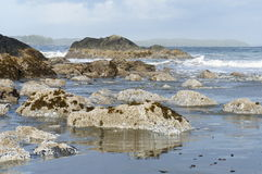 Schroffe Küstenlinie von Chesterman-Strand, Tofino, Britisch-Columbia, Kanada Lizenzfreie Stockfotografie