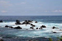 Schroffe Küstenlinie von Hawaii Stockfotos
