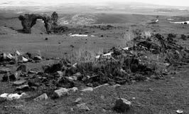Schroffe Landschaft des alten Ani Stockfoto