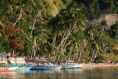 schronienie tropikalny zdjęcie stock